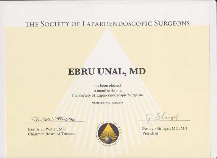 The Society of Laparoendoscopic Surgeon